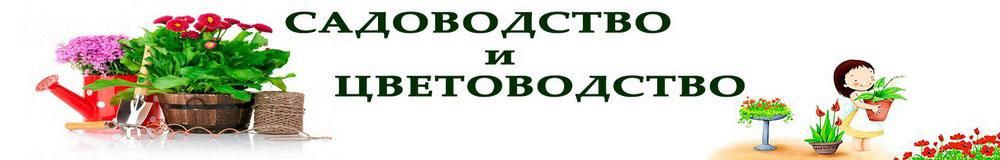 Дневник садовода minitraktor-pushkino.ru